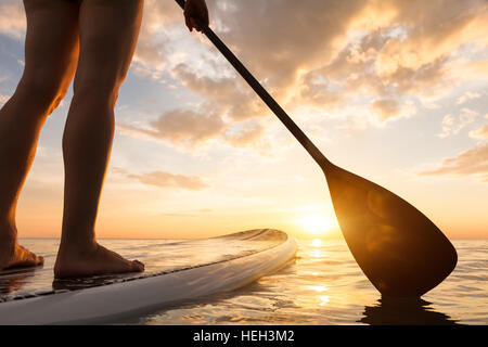 Stand up paddle boarding on a quiet sea with warm summer sunset colors, close-up of legs - Stock Image