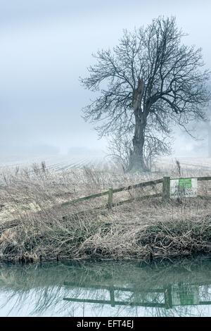 A Misty River Avon - Stock Image