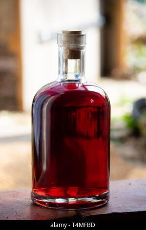 bouteille maison de vin rouge - Image