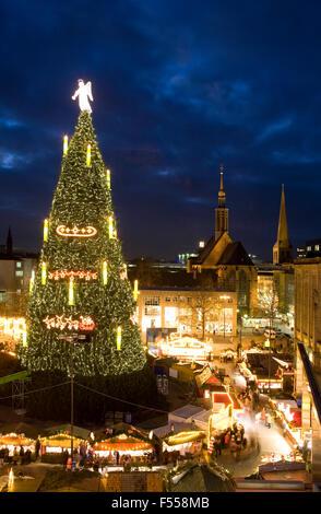 DEU, Deutschland, Nordrhein-Westfalen, Ruhrgebiet, Dortmund, hoechster Weihnachtsbaum der Welt auf dem Weihnachtsmarkt - Stock Image