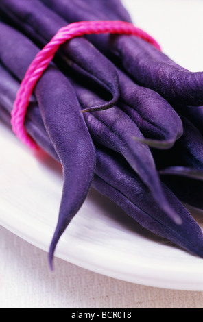 Phaseolus Vulgaris ¡®Purple Queen¡¯, French Bean - Stock Image