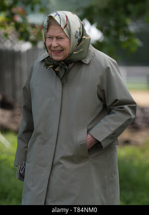 Windsor, UK. 11th May, 2019. Her Majesty the Queen attends Royal Windsor Horse Show on day four of the show to watch her horse Balmoral Mandarin compete Credit: Maureen McLean/Alamy Live News - Stock Image