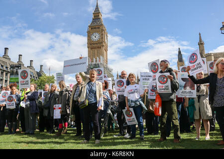 London, UK. 13th Sep, 2017. Animal rights groups campaigned in Parliament Square as part of Compassion for World Farming  to highlight the inhumane treatment and suffering of Millions of live animals beeing transported thousands of kilometres  and   ban the live exports of animals as they face slaughter Credit: amer ghazzal/Alamy Live News - Stock Image