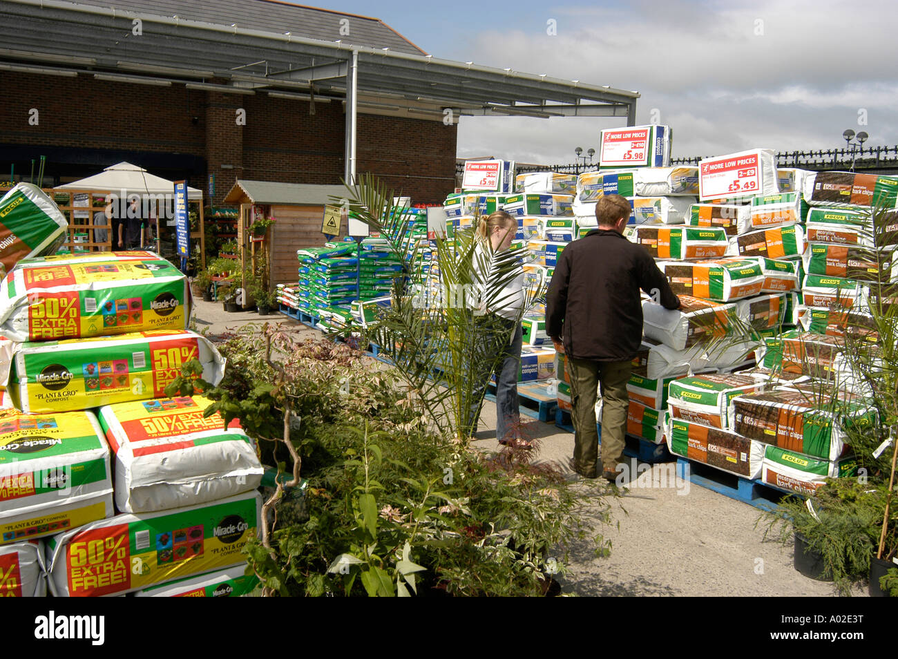 People shopping focus diy do it yourself and garden centre store people shopping focus diy do it yourself and garden centre store parc y llyn aberystwyth garden plants and flowers paraphanalia solutioingenieria Gallery