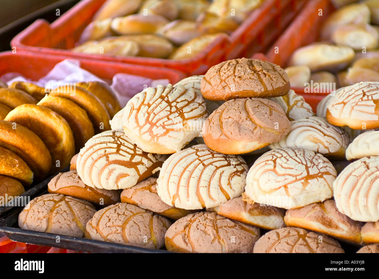 Fresh Cookies In A Mexican Bakery In San Miguel De Allende Mexico