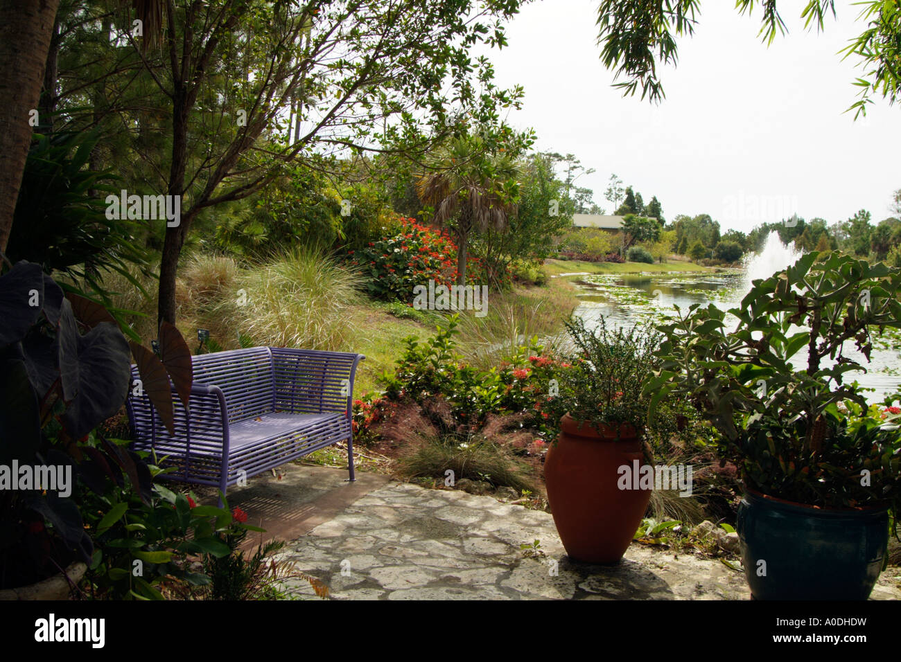 the florida botanical gardens at largo florida usa the botanical
