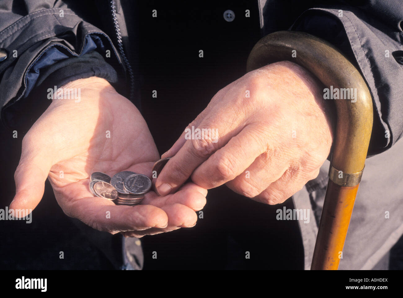 Adult Man With a Cane Shopping and Counting Money on the Street New York City USA - Stock Image