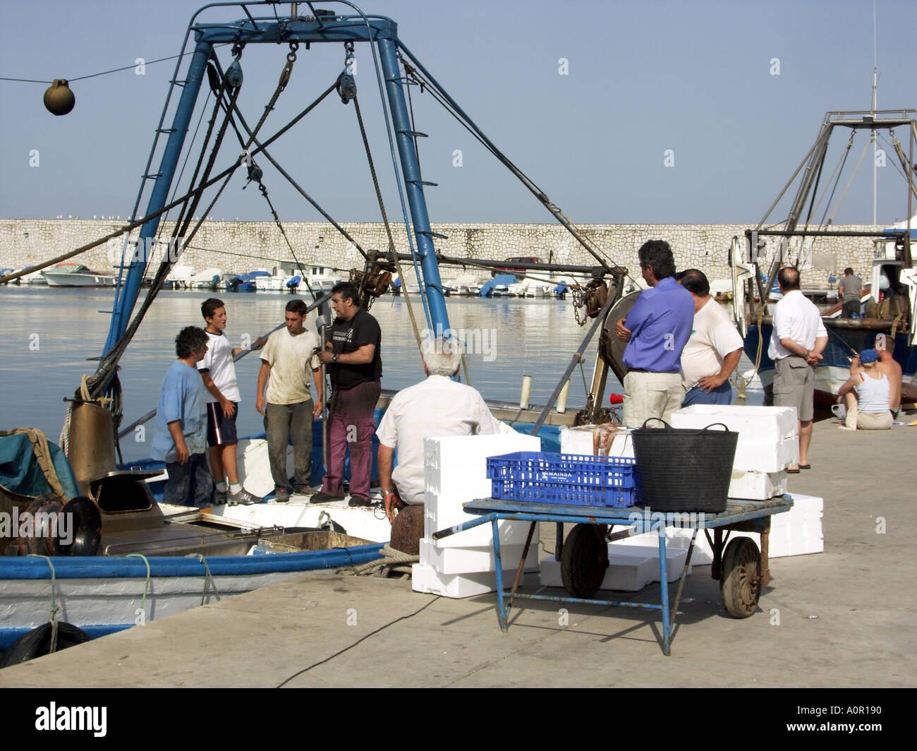 Sorting and Boxing the Catch, Puerto Deportivo de Fuengirola, Fuengirola Port, Costa del Sol, Spain - Stock Image