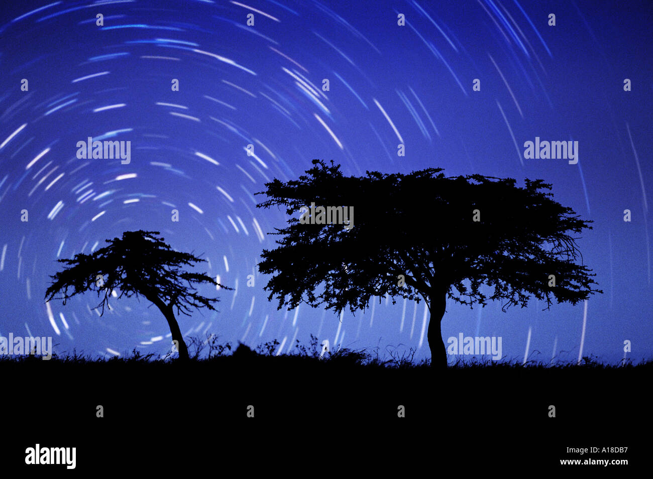 Long exposure of night sky with stars Namibia - Stock Image
