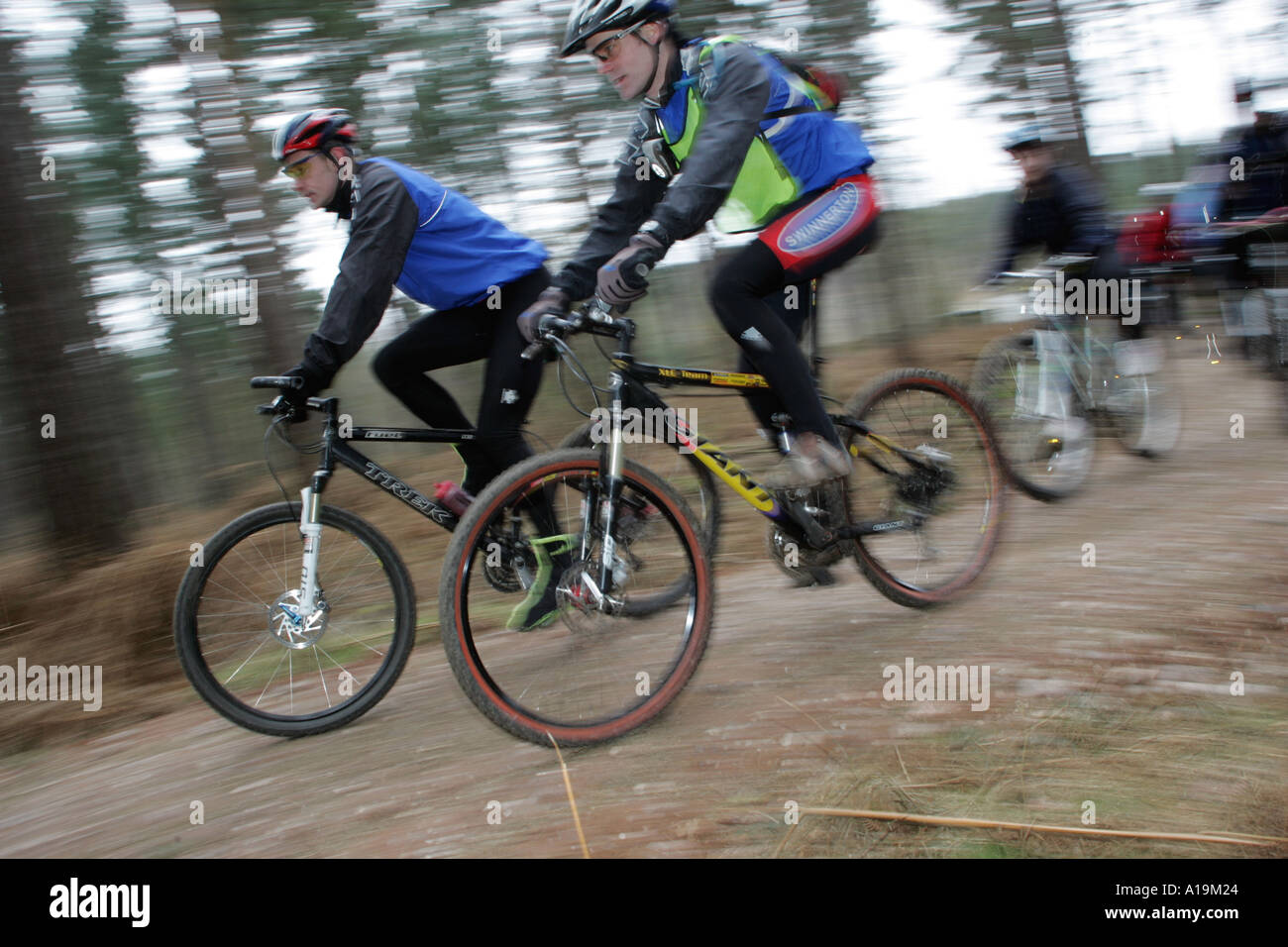 Mountain bike riders in action on Cannock Chase Stock Photo