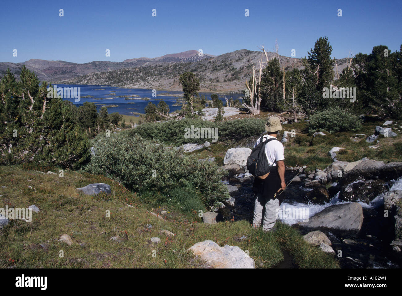 Flyfisherman on a tributary stream above Thousand Island Lake in the Ansel Adams Wilderness Area Sierra Nevada California Stock Photo