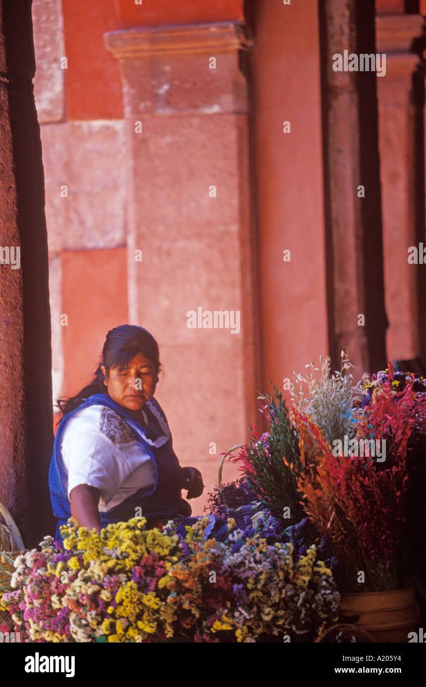 flower vendor on the side of El Jardin San Miguel de Allende Mexico - Stock Image