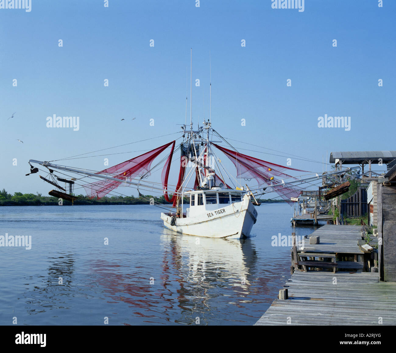 Shrimp boat texas stock photo 10584099 alamy for Stock fish for sale texas