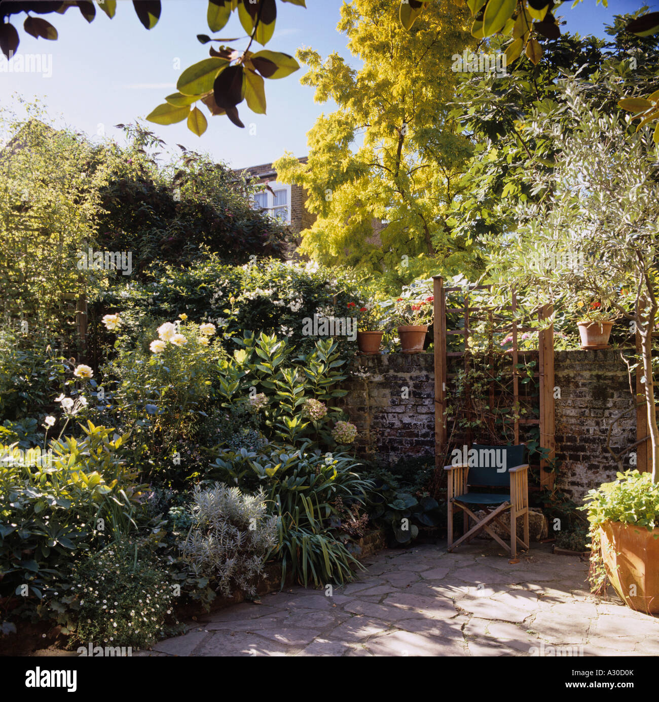 Garden and patio of a London townhouse - Stock Image
