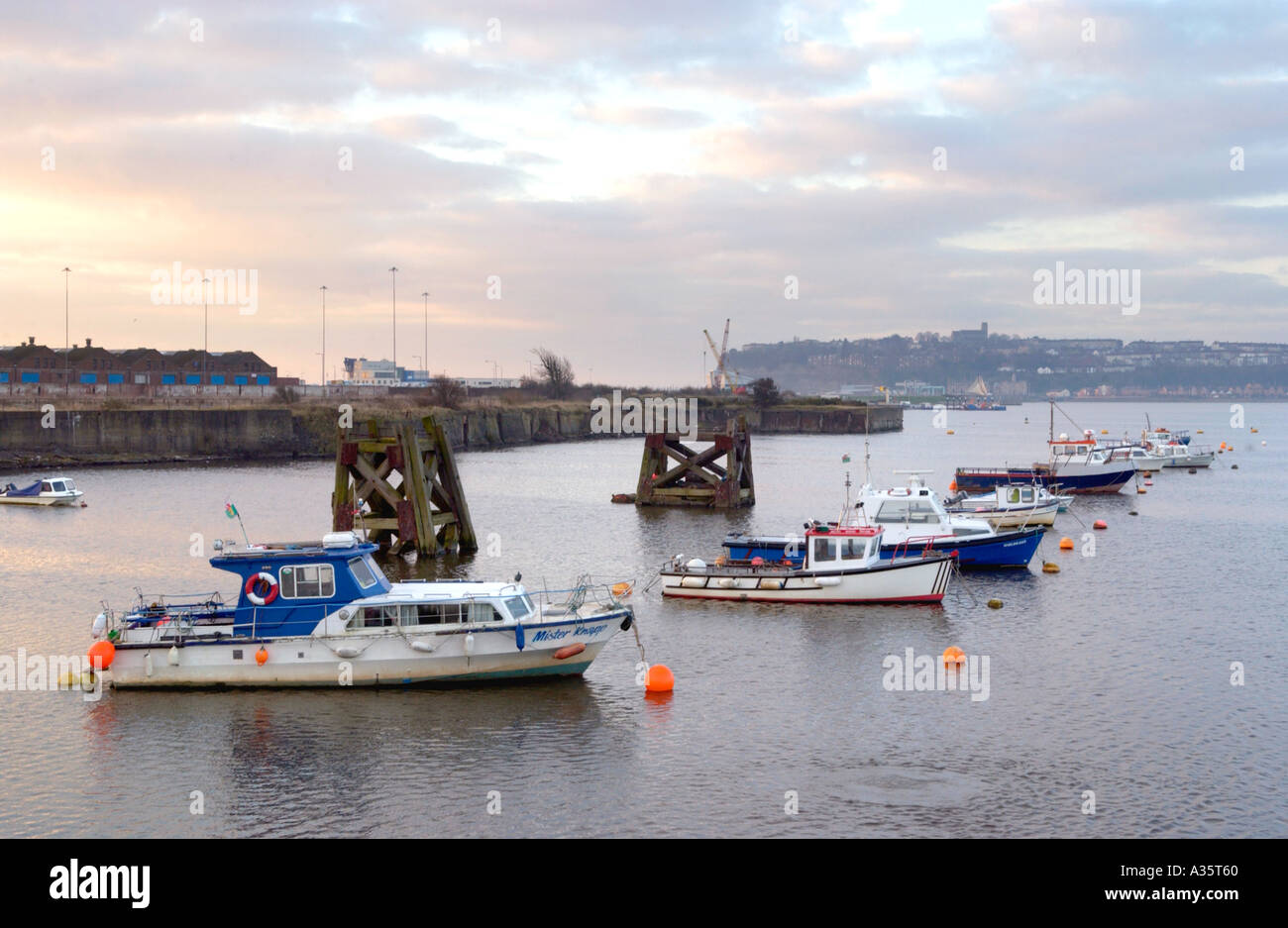 Inshore angling boats at moorings in the early morning light Cardiff Bay South Wales UK - Stock Image