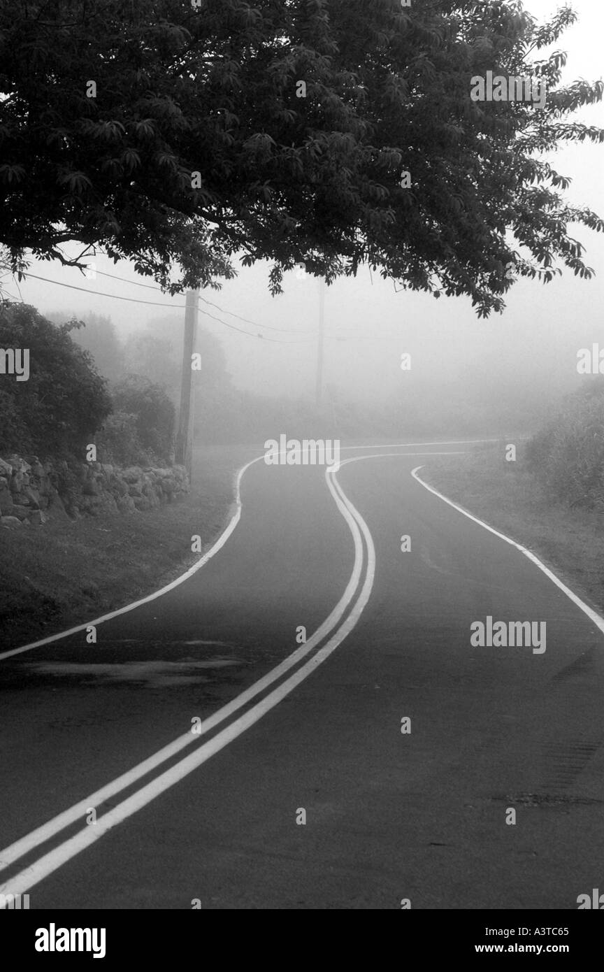 Curve in the road into fog with landscape block Island Rhode island USA united states RI - Stock Image