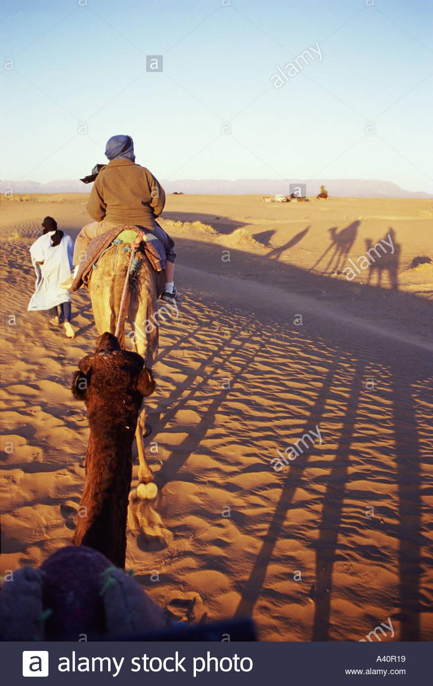 camel-trek-A40R19.jpg