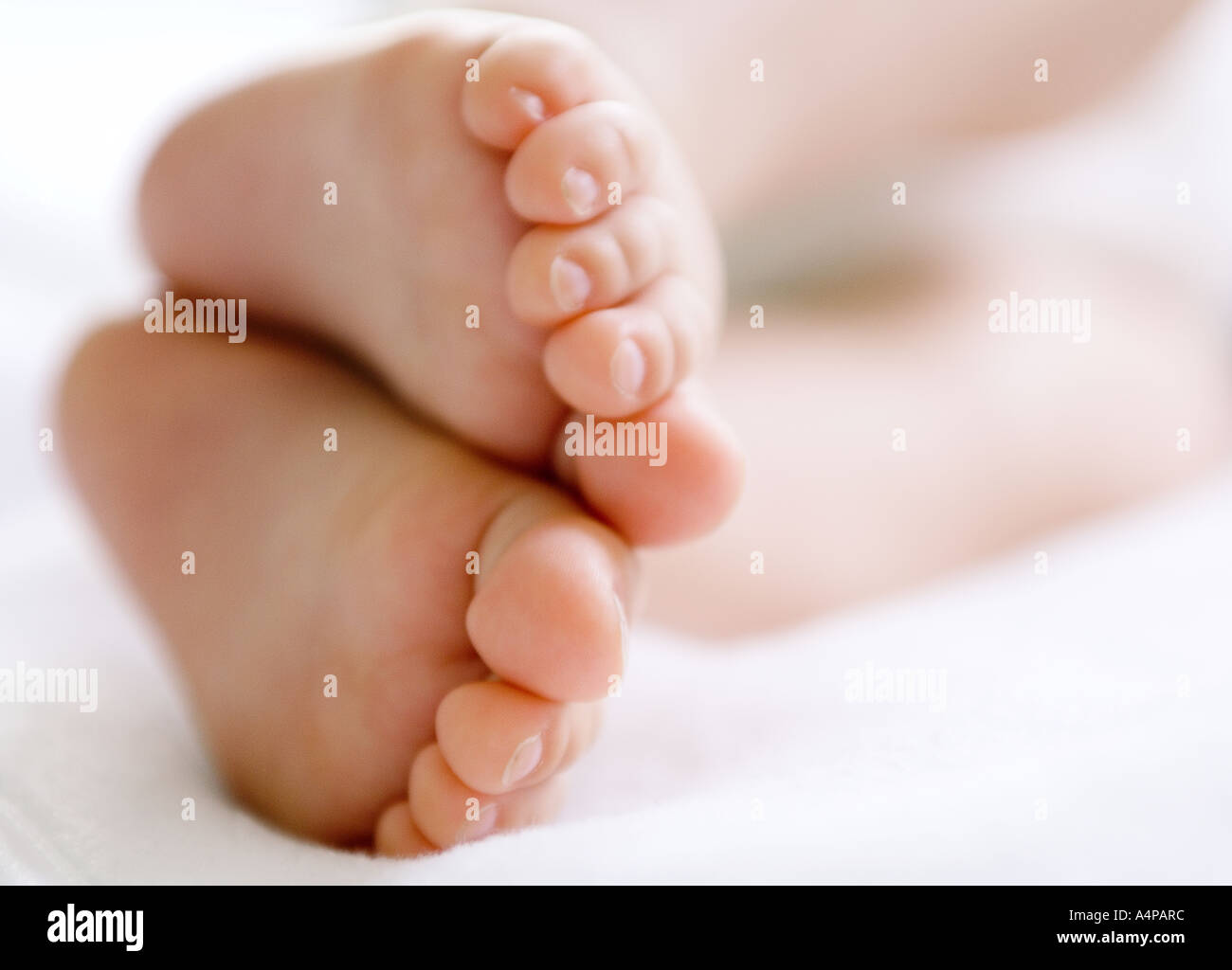 babys feet 7 month old,seven month old Stock Photo: 6342139 - Alamy