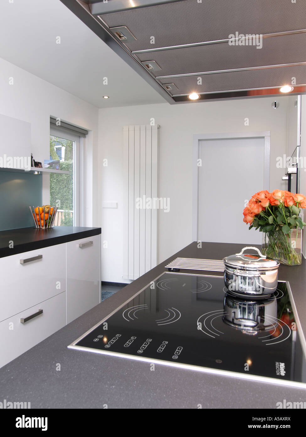 Modern style white kitchen with induction cooker and design radiator heating clean flowers mortgage