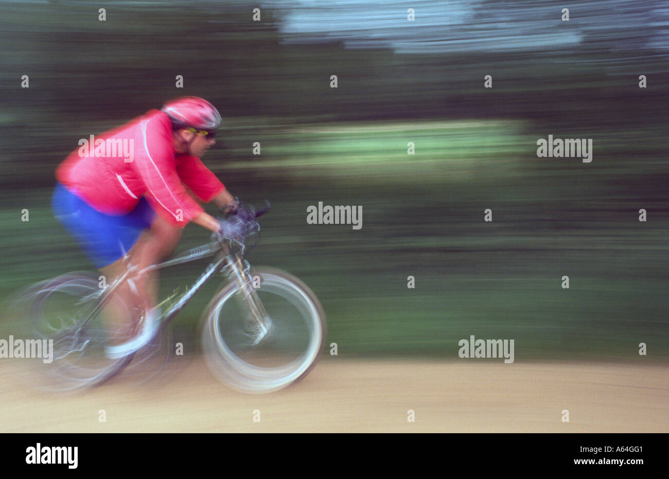 PICTURE CREDIT DOUG BLANE Mountain Biking at the bike park Brickhill Woods Woburn Sands forest Centre Parcs - Stock Image