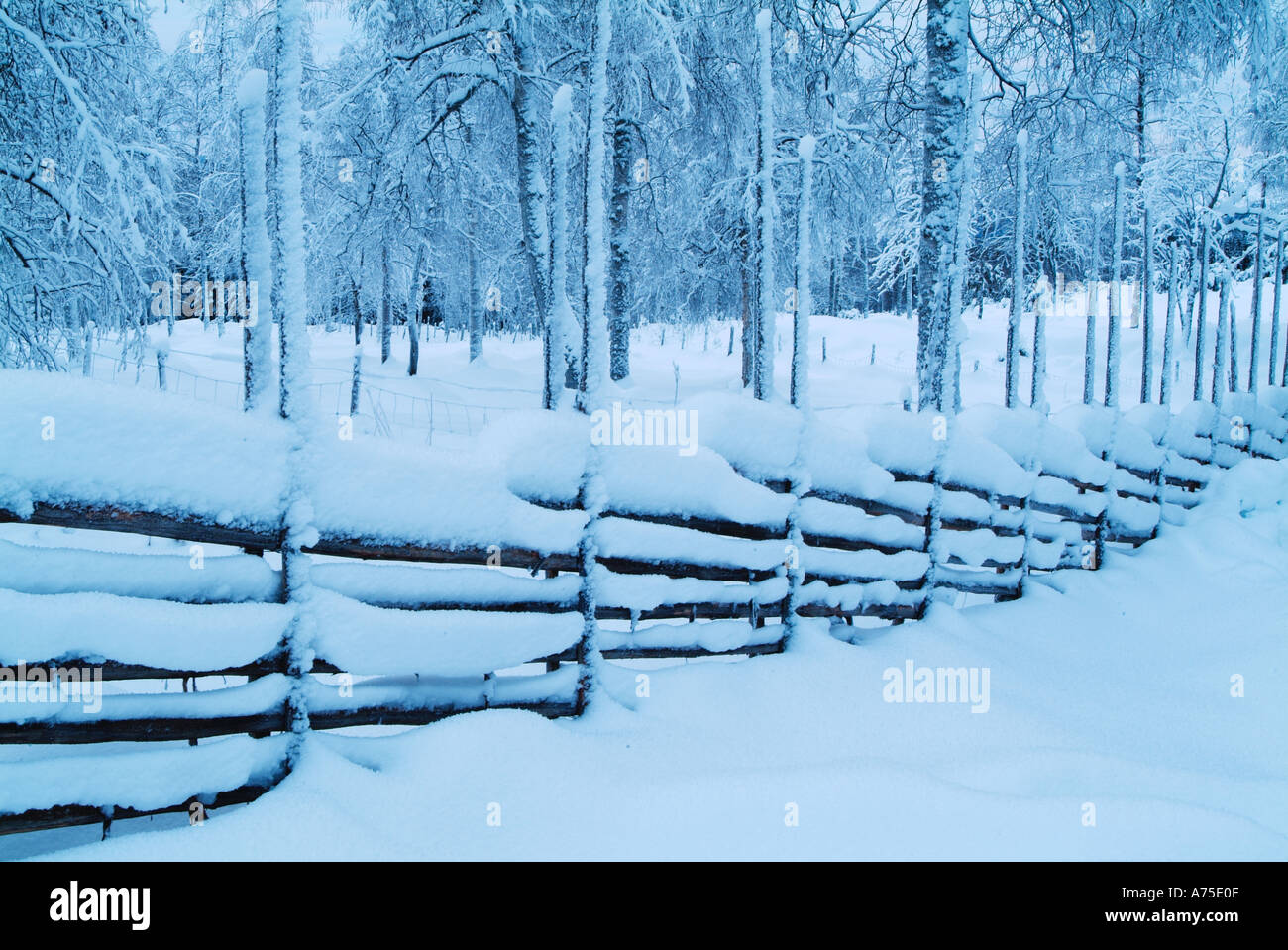 Snow Covering Fence And Trees In Rural Varmland Sweden