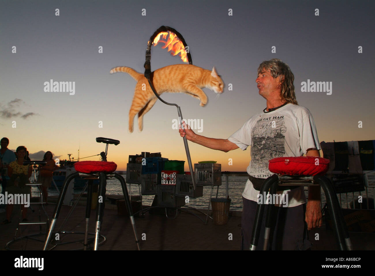 the-catman-performs-with-live-trained-cats-at-mallory-square-sunset-A86BCP.jpg