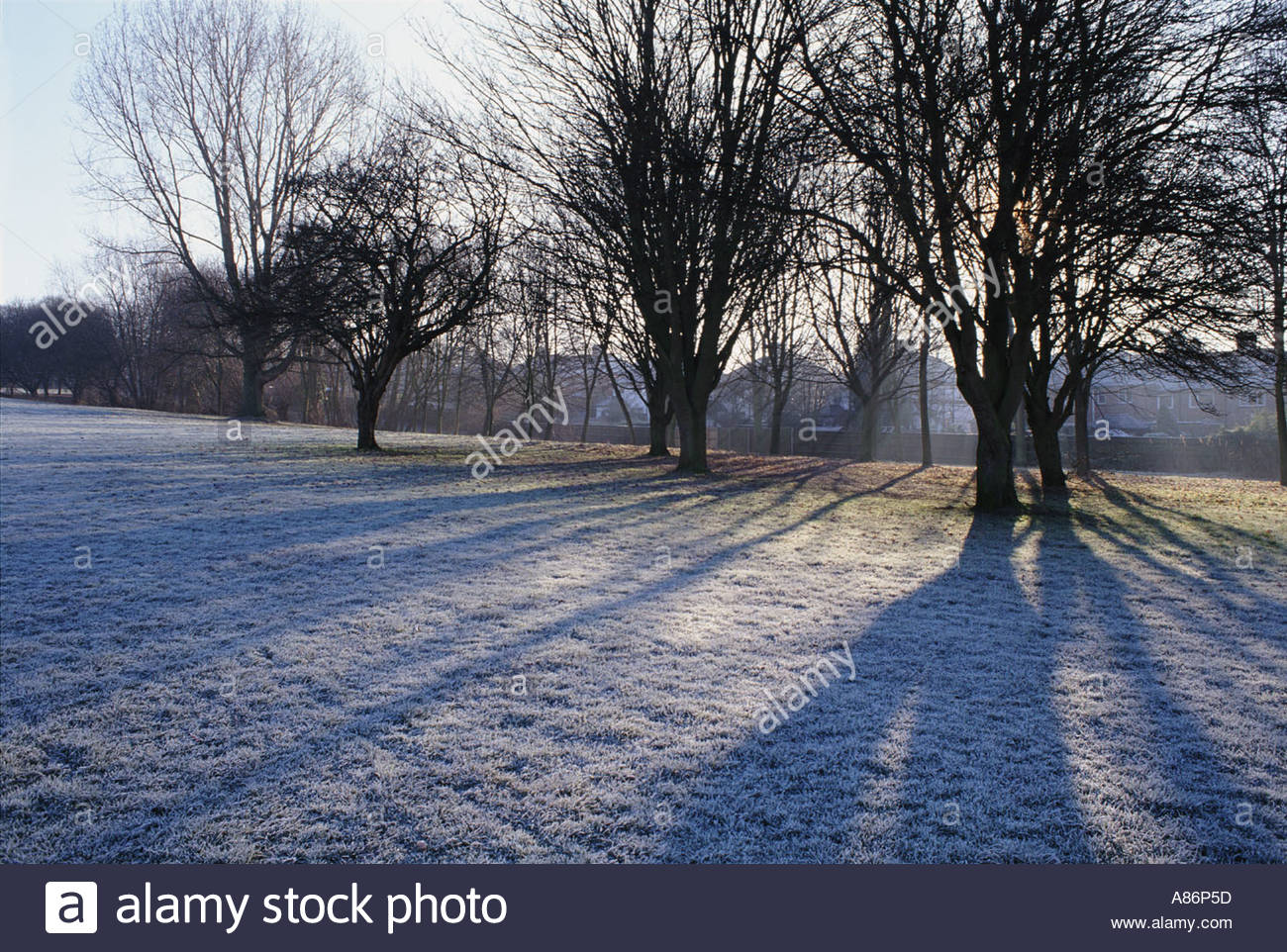 Winter scene at South Parks Oxford Stock Photo