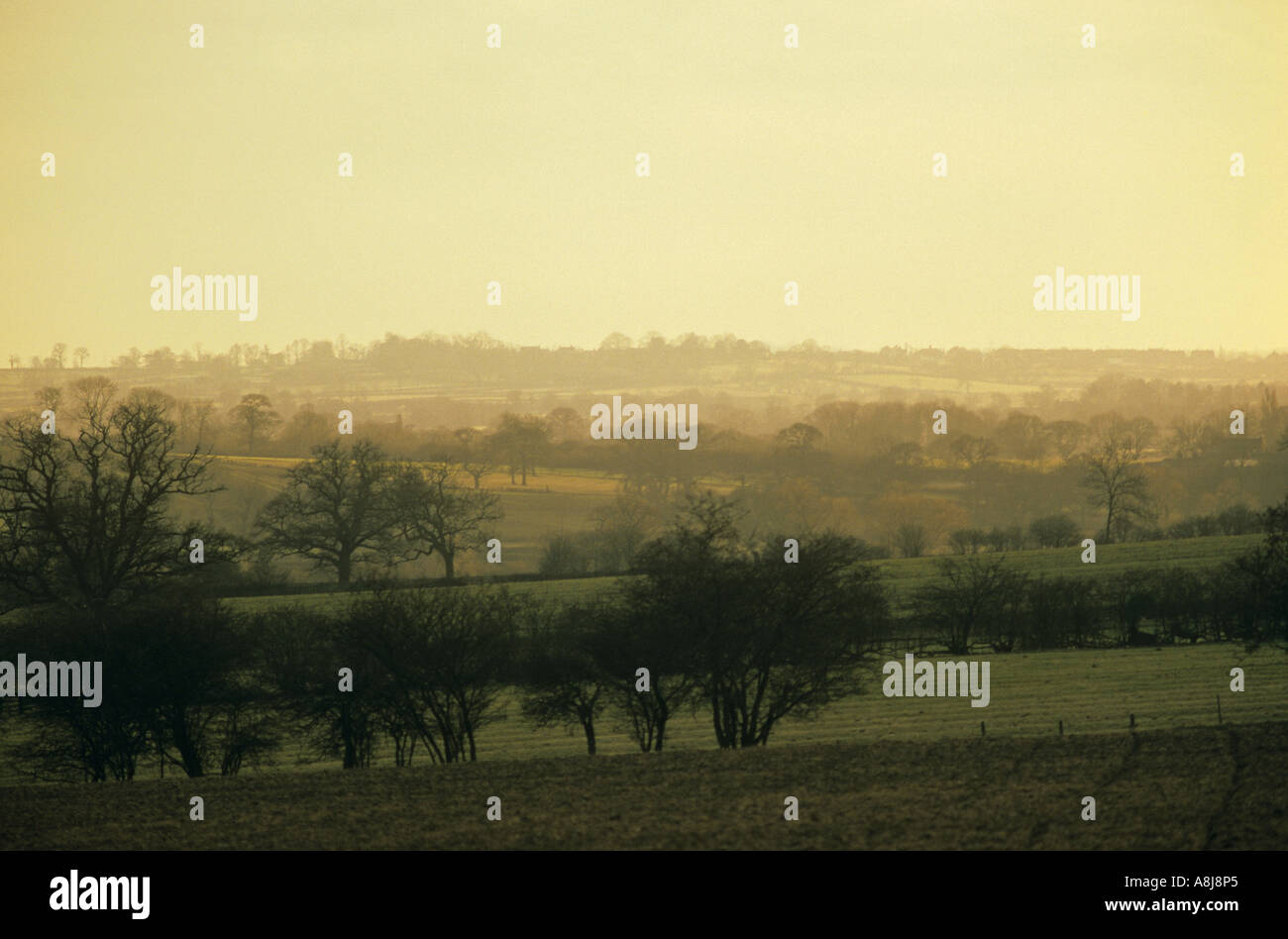 Ambien Hill  Leicestershire - Stock Image