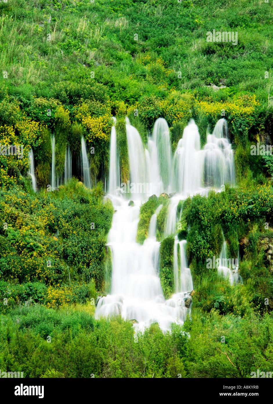 USA IDAHO NIAGARA SPRINGS STATE PARK Thousand springs cascading from waterfalls Hagerman Valley - Stock Image