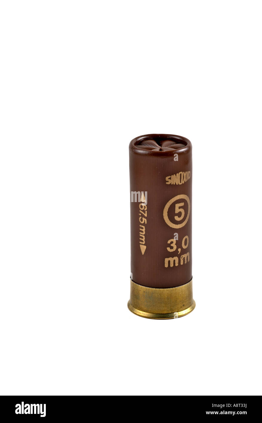 Rottweil 12 gauge Shotgun Cartridges 32 Gram Size 5 Game Load Stock ...