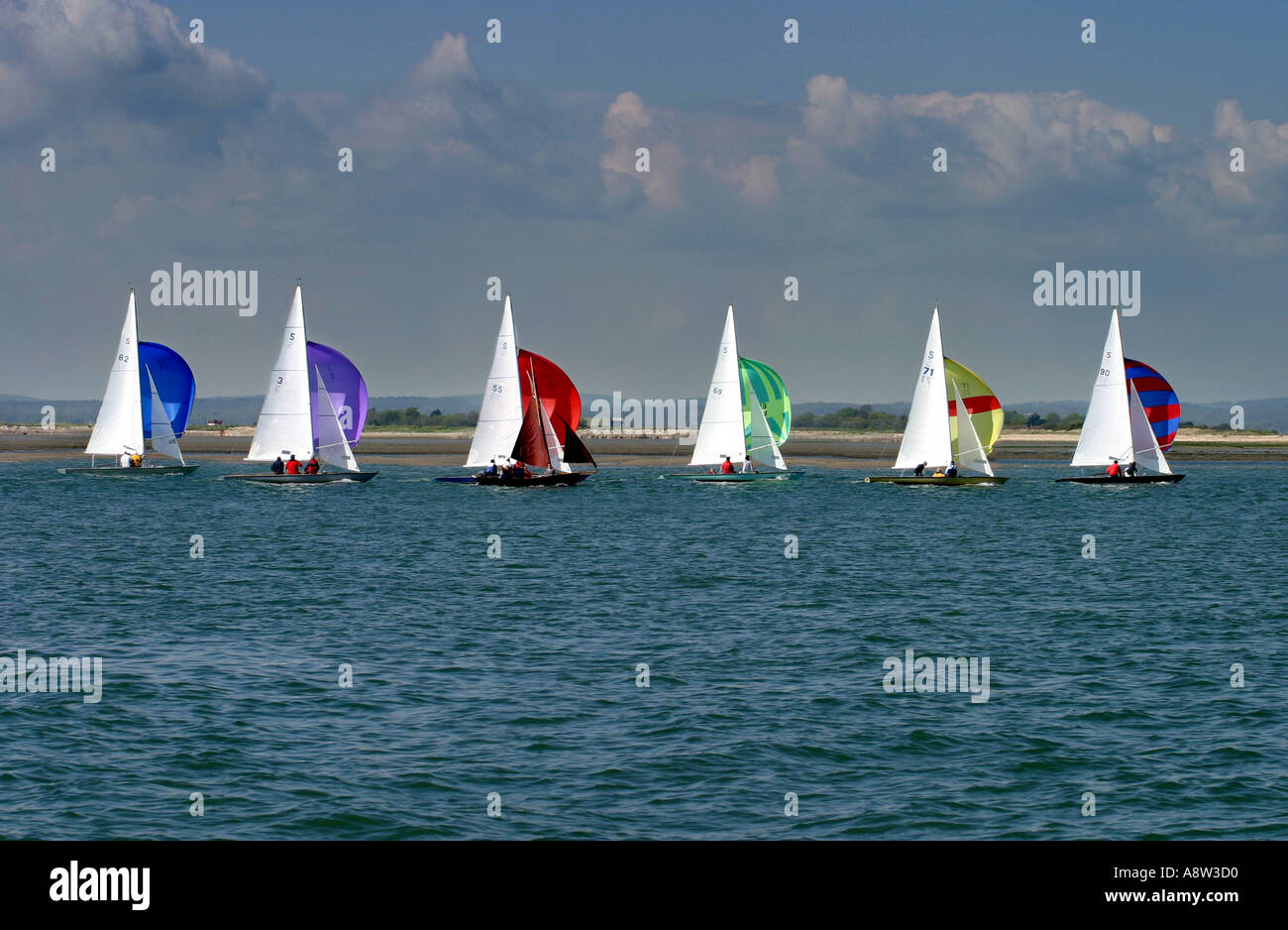 six-sailing-boats-with-colourful-sails-in-a-line-chichester-sussex-A8W3D0.jpg
