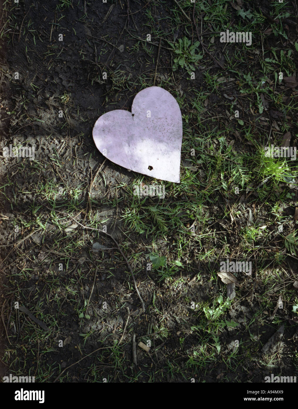Discarded Heart - Stock Image