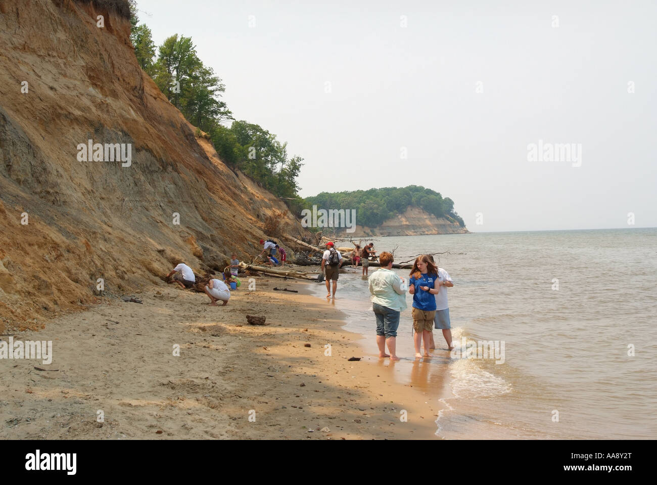 usa-maryland-calvert-cliffs-state-park-families-look-for-fossils-and-AA8Y2T.jpg