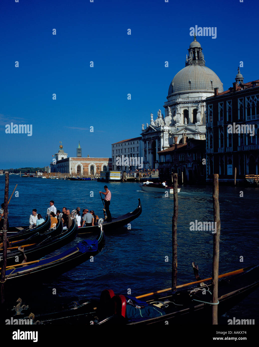 Canal Grande with gondolas transporting people Venice, UNESCO World Heritage Site, Italy,  Europe. Photo by Willy Stock Photo