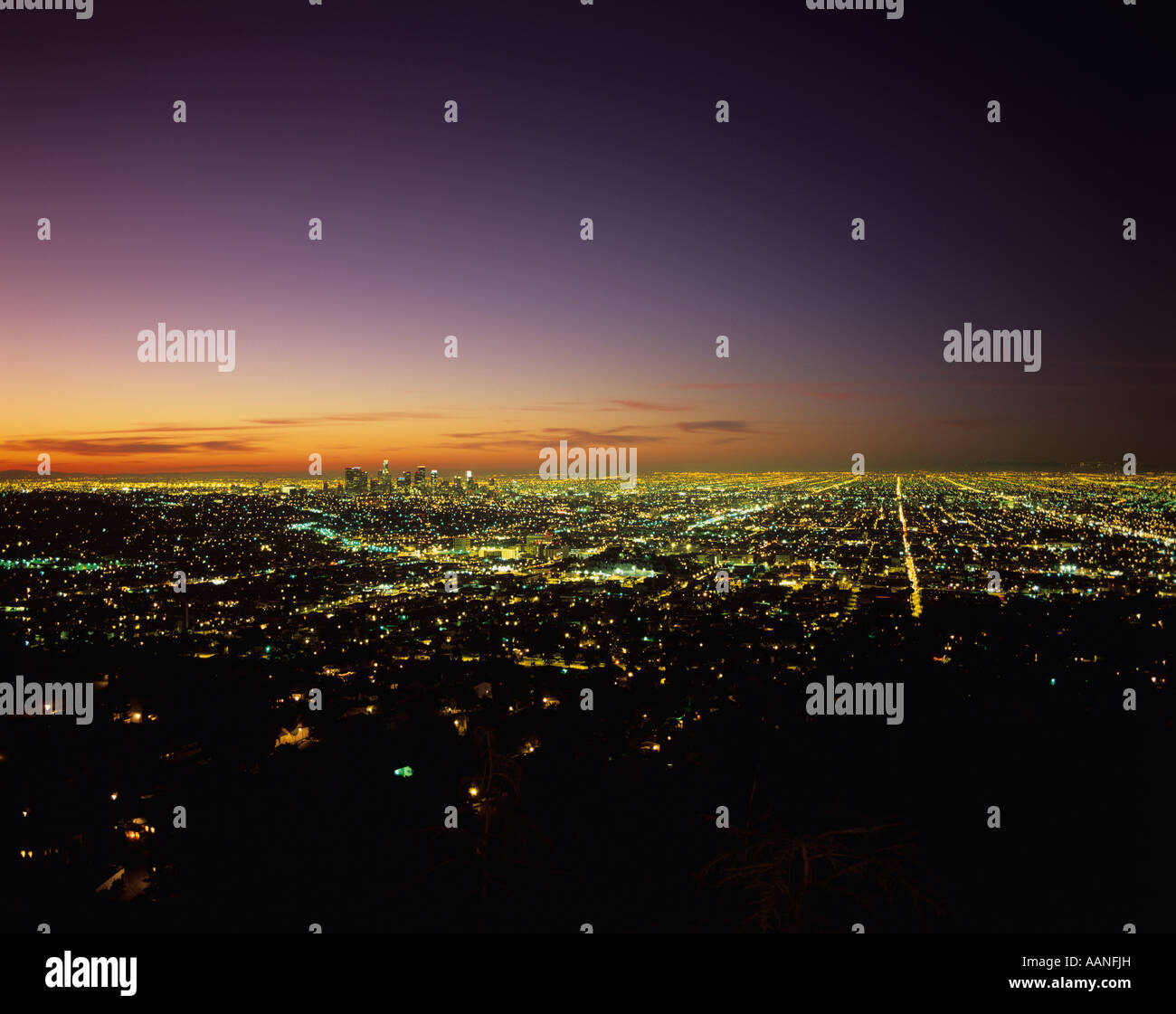 Row After Row Of City Lights Retreating Into The Distance From Griffith Park  Sunrise Over LA California USA