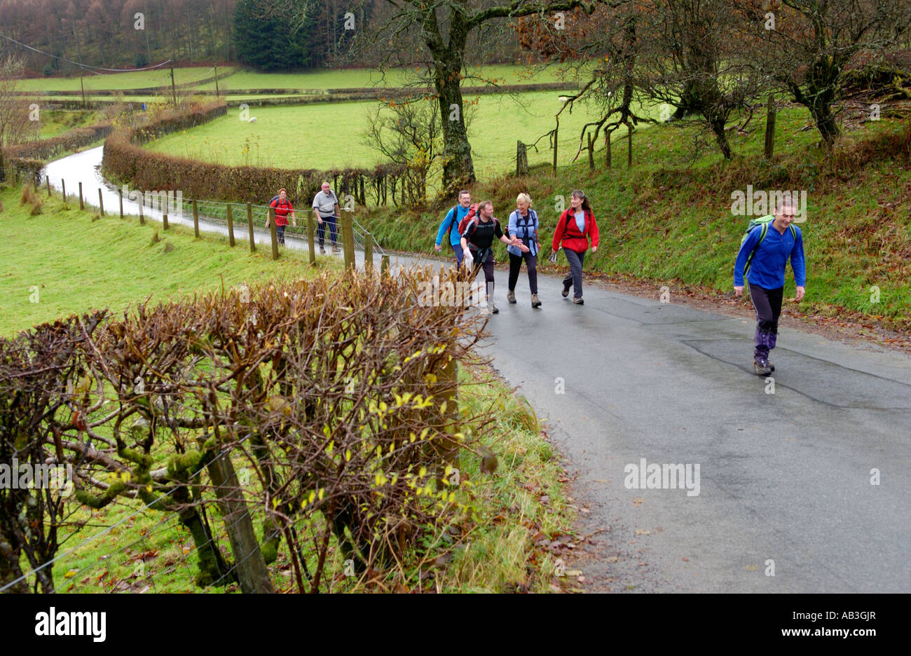 Group of walkers on country road near Llanwrtyd Wells Powys Wales UK taking part in the Real Ale Ramble walkingStock Photo