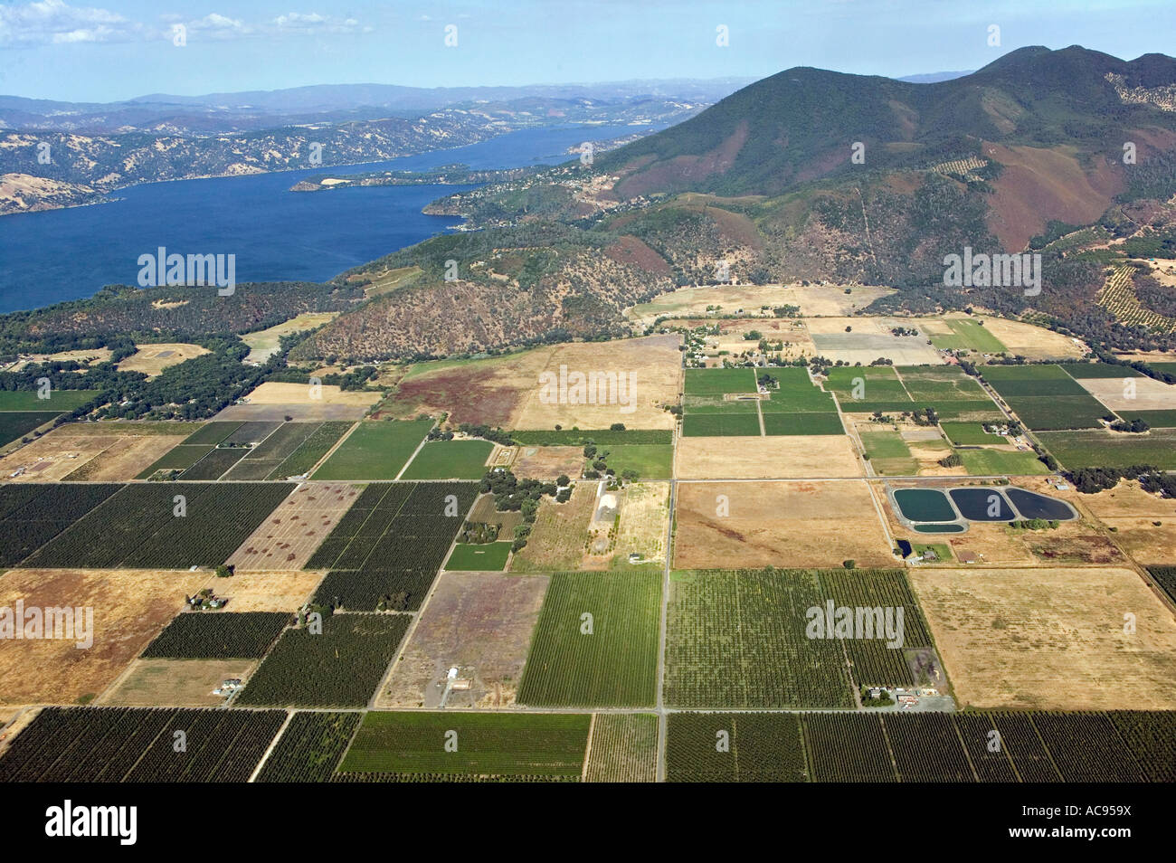 aerial view above fields Kelseyville California Clearlake and Mount Konocti in Lake County - Stock Image