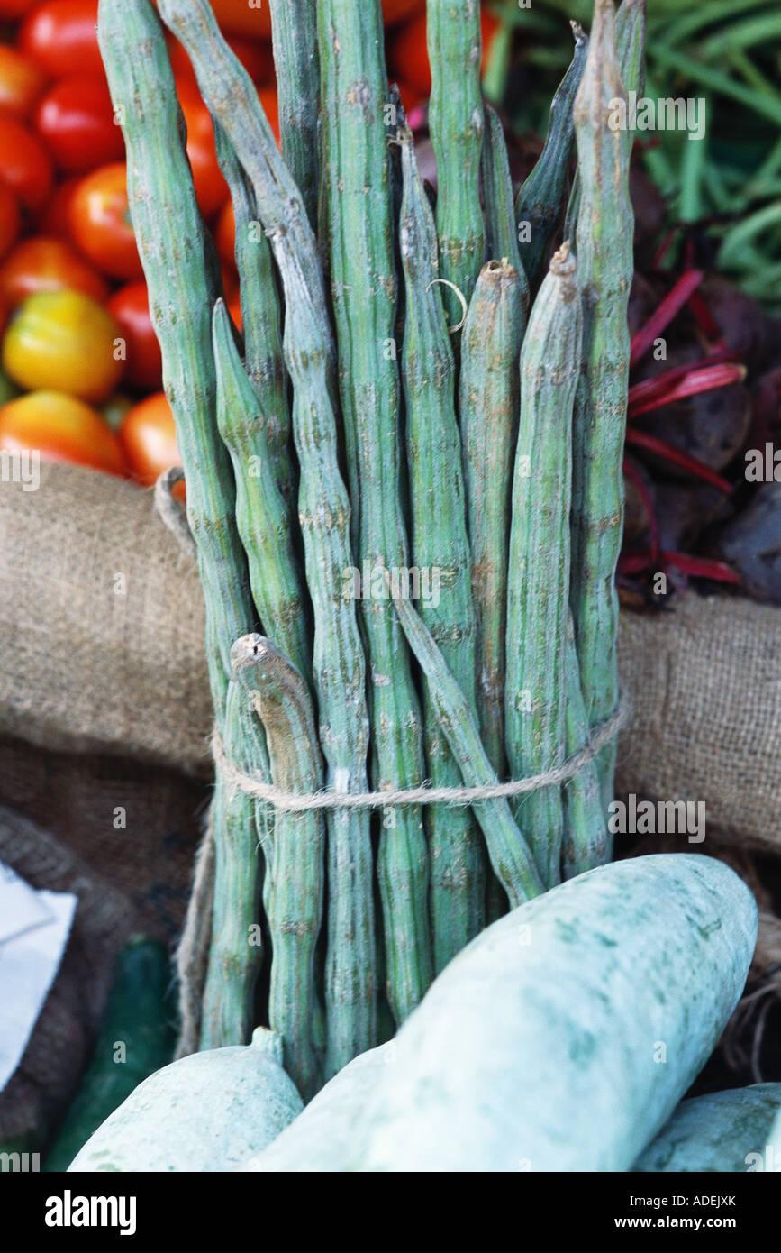 Bundle of moringa vegetables - Stock Image