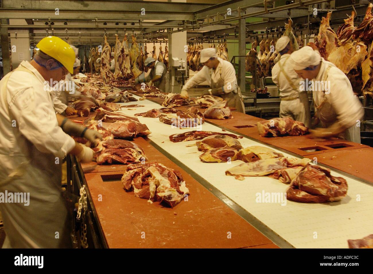 processing-welsh-beef-carcasses-at-st-merryn-foods-abattoir-merthyr-ADFC3C.jpg