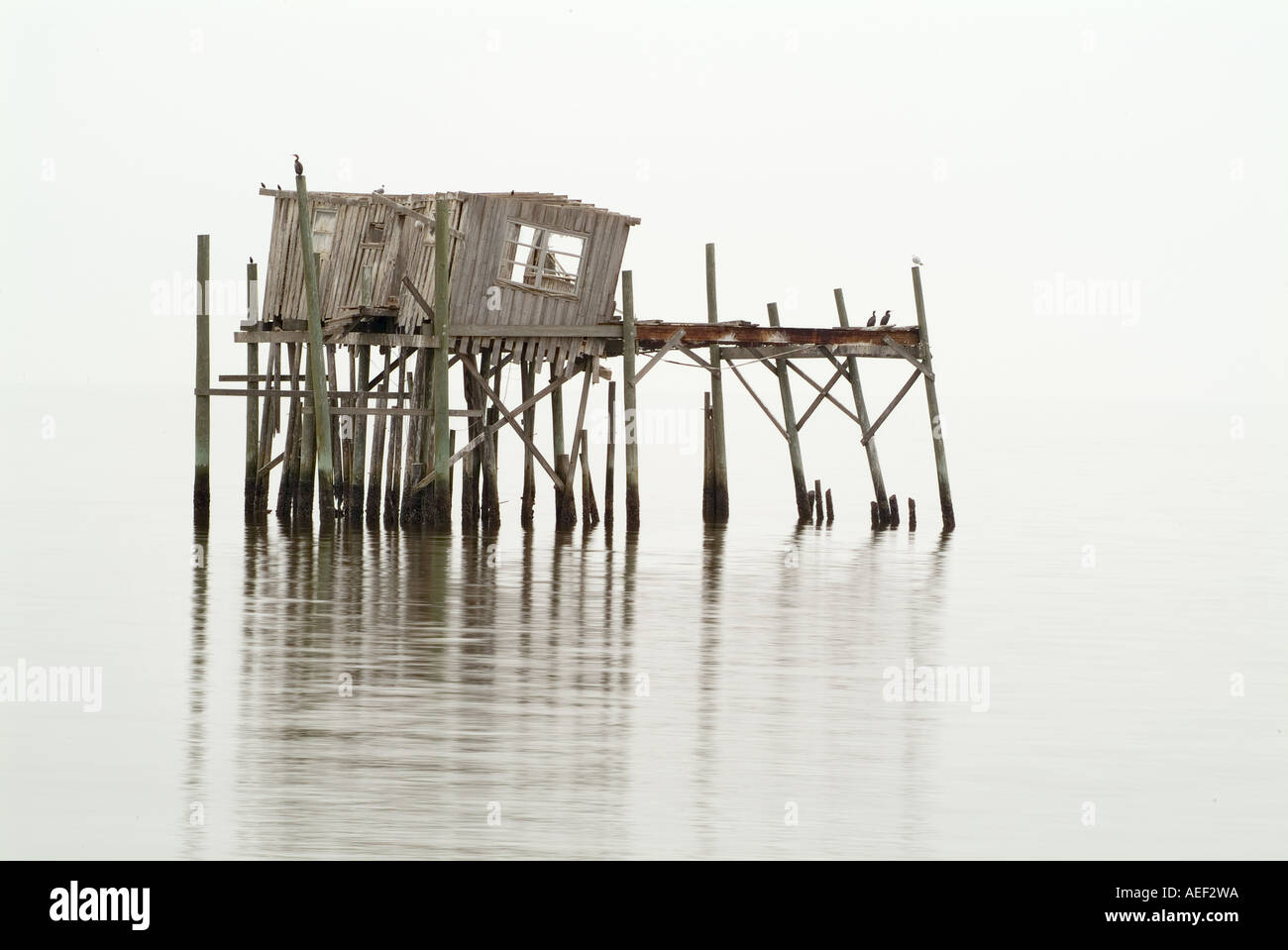 High Quality Wooden Damaged Run Down Boat House Over Water Cedar Key Florida Coastal  Scenic Moody Weathered Crusty Wood Structure