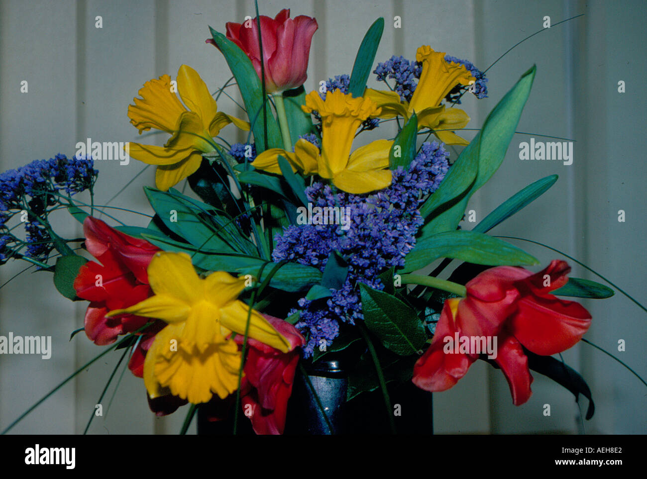 bunch of tulips. Photo by Willy Matheisl - Stock Image