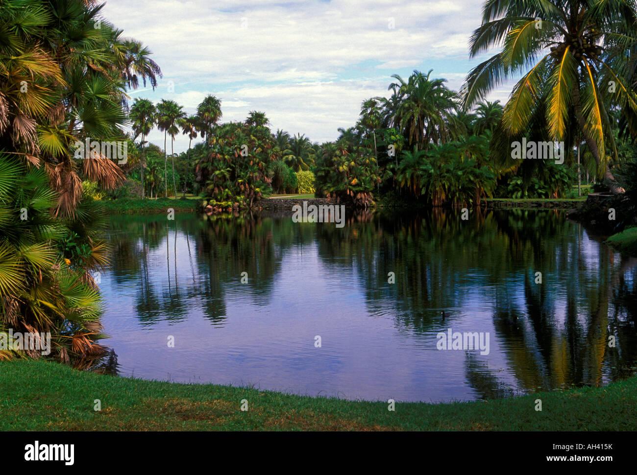 Fairchild Tropical Botanic Garden, city, Miami, Florida Stock Photo