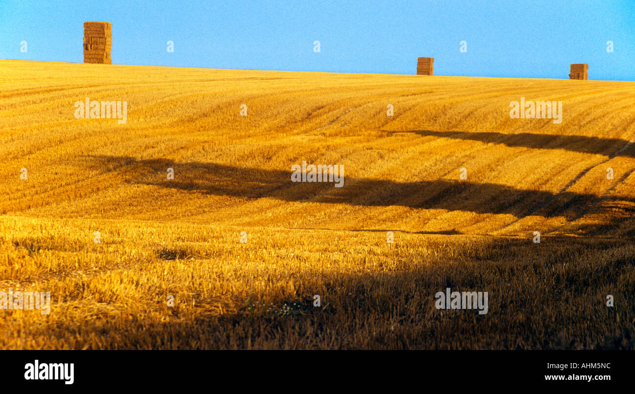 bales-of-straw-on-the-horizon-in-the-eve