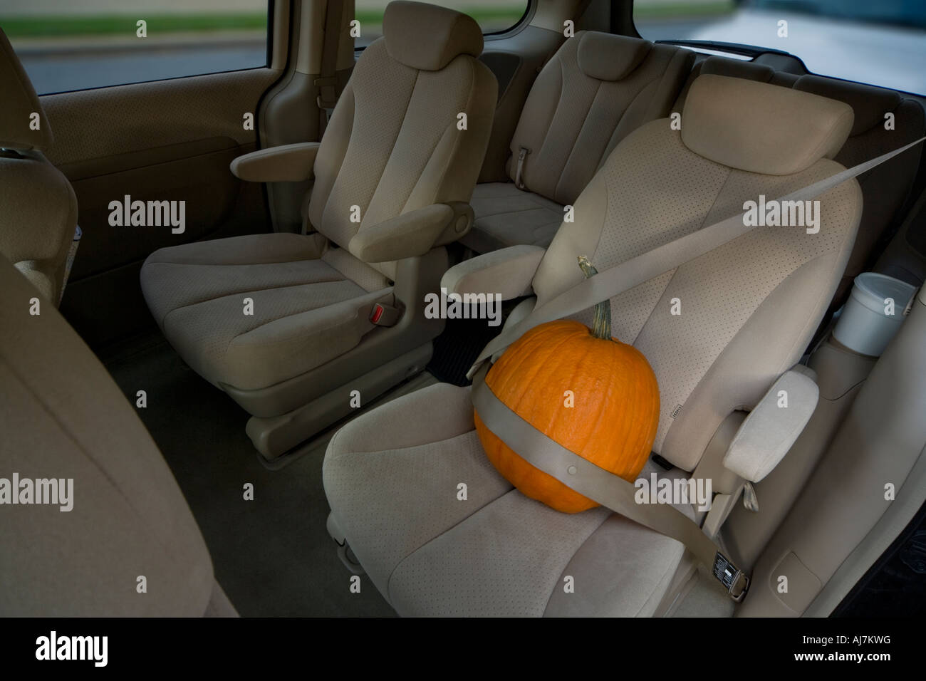 https://c7.alamy.com/comp/AJ7KWG/preparations-for-halloween-overly-protective-halloween-pumpkin-in-AJ7KWG.jpg