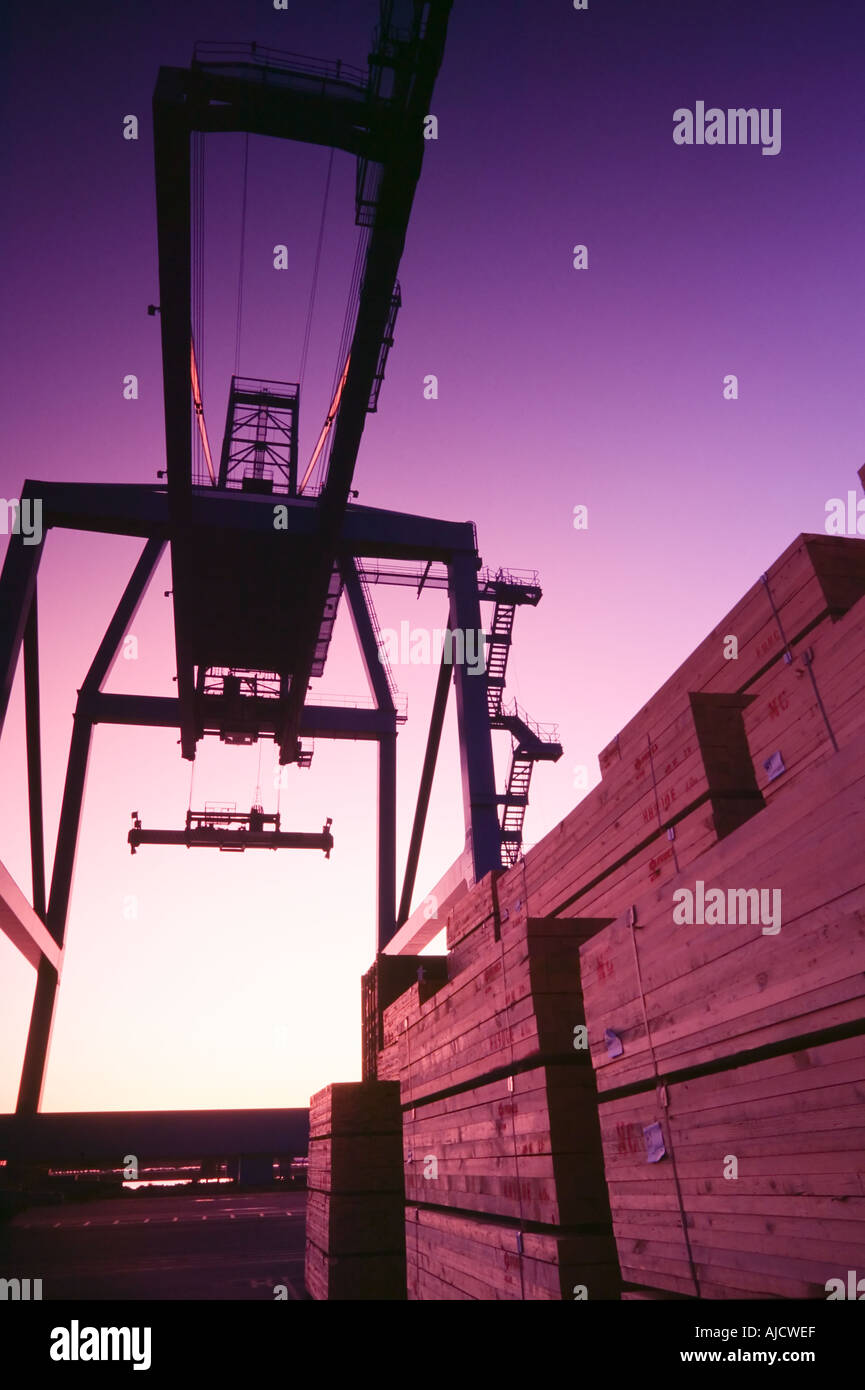 Container crane used to load freighters - Stock Image