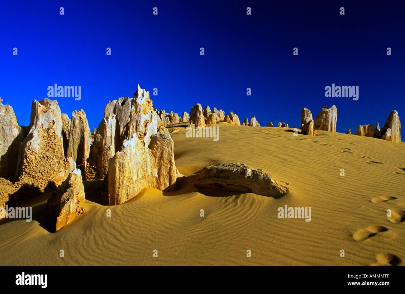 The Pinnacles Cervantes National Park Western Australia - Stock Image