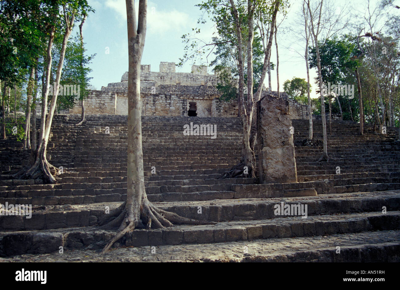 structure-viii-at-the-mayan-ruins-of-cal