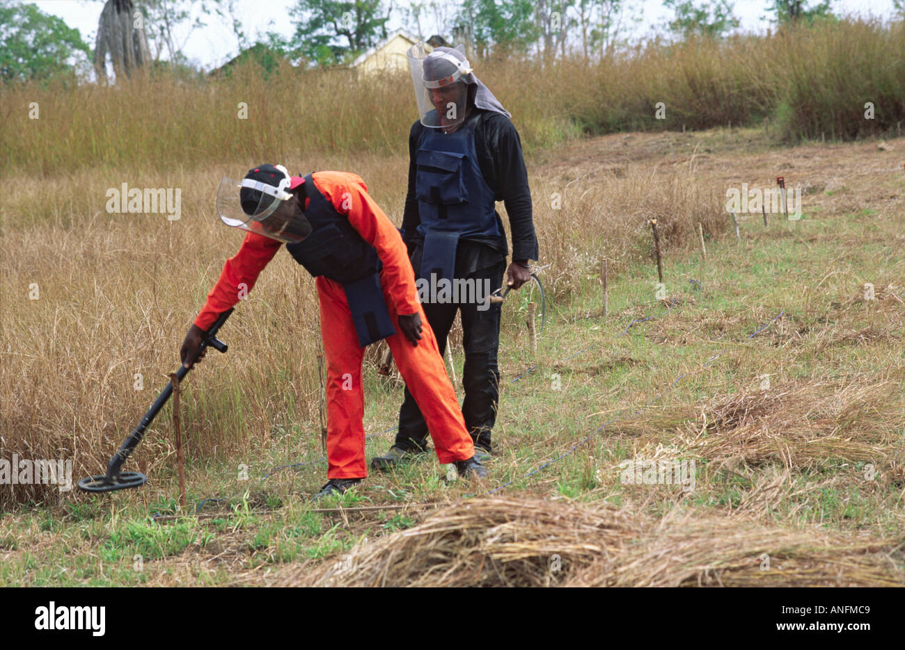 A trainee learning to search for land mines. Mozambique - Stock Image