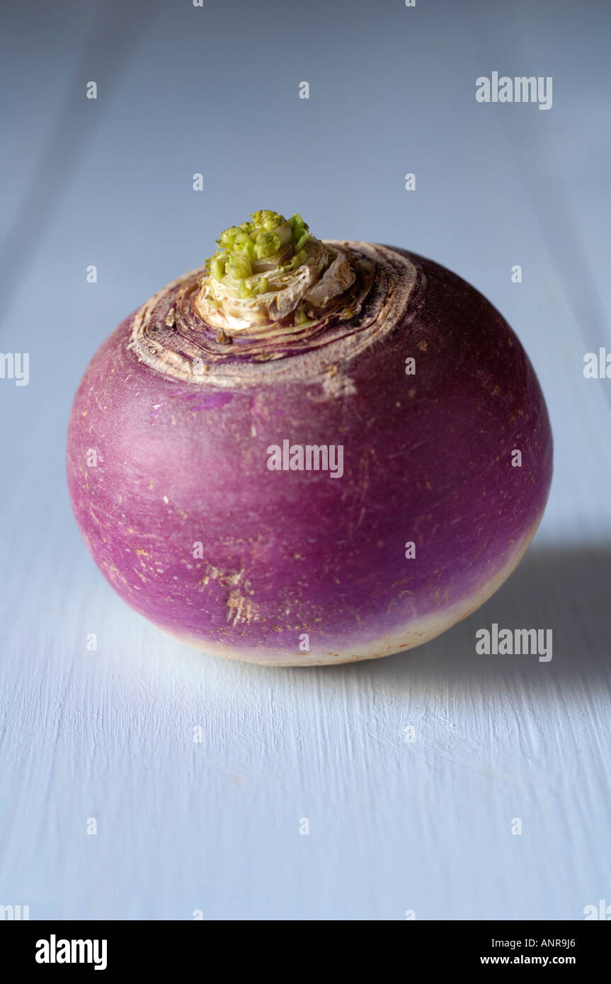 Turnip on blue wooden table - Stock Image