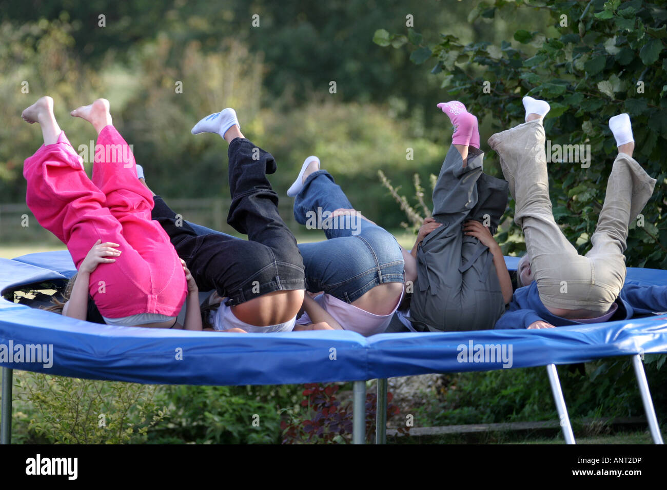 young-girls-bums